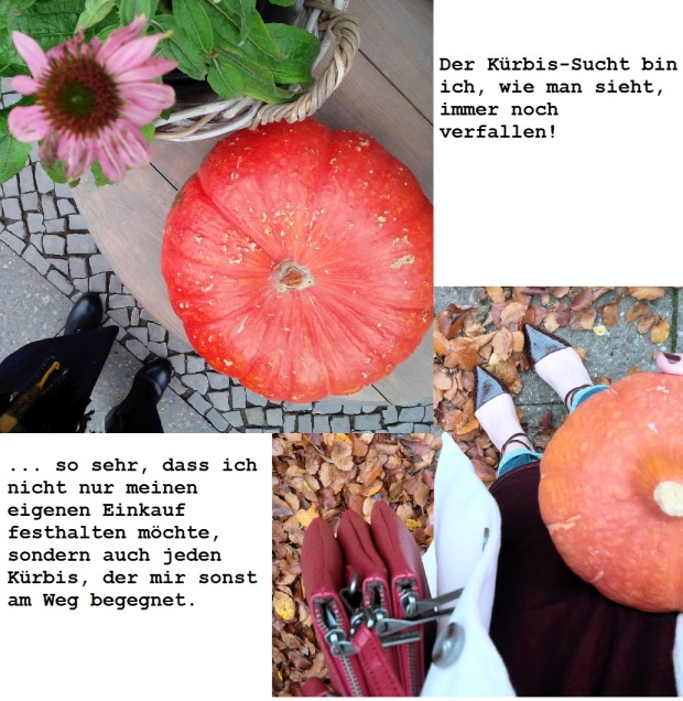 the-weekender-vegan-sustainable-and-something-new-liebe-was-ist-gedanken-lifestyle-family-time-blogging-and-pumpkin-cravings-8
